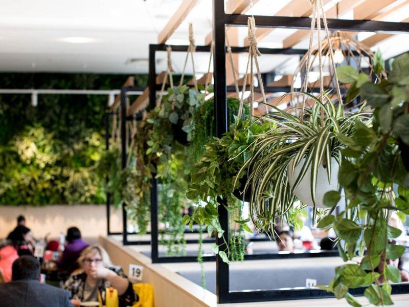 Vertical-Garden-Cafe-Design-Melbourne